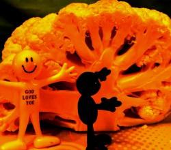 brain chou